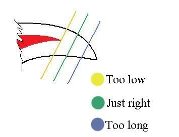 Schéma de coupe de griffes
